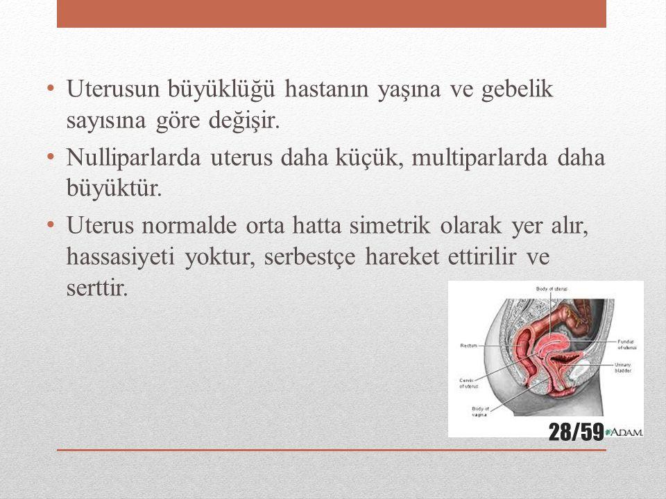 Uterusun büyüklüğü hastanın yaşına ve gebelik sayısına göre değişir.