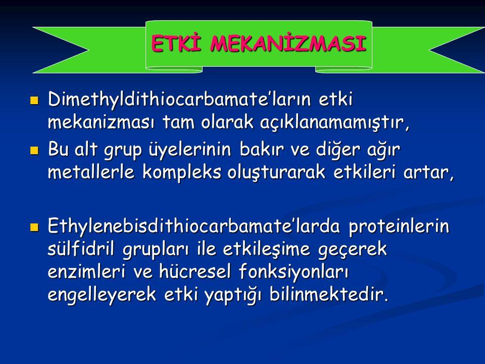 Dimethyldithiocarbamate'ların etki mekanizması tam olarak açıklanamamıştır, Dimethyldithiocarbamate'ların etki mekanizması tam olarak açıklanamamıştır