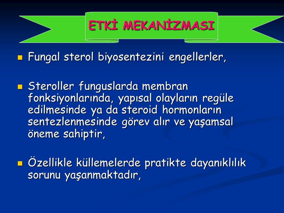 Fungal sterol biyosentezini engellerler, Fungal sterol biyosentezini engellerler, Steroller funguslarda membran fonksiyonlarında, yapısal olayların regüle edilmesinde ya da steroid hormonların sentezlenmesinde görev alır ve yaşamsal öneme sahiptir, Steroller funguslarda membran fonksiyonlarında, yapısal olayların regüle edilmesinde ya da steroid hormonların sentezlenmesinde görev alır ve yaşamsal öneme sahiptir, Özellikle küllemelerde pratikte dayanıklılık sorunu yaşanmaktadır, Özellikle küllemelerde pratikte dayanıklılık sorunu yaşanmaktadır, ETKİ MEKANİZMASI