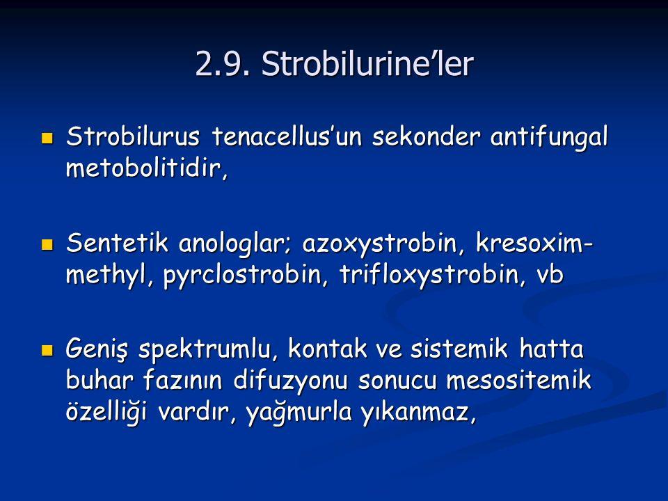 2.9. Strobilurine'ler Strobilurus tenacellus'un sekonder antifungal metobolitidir, Strobilurus tenacellus'un sekonder antifungal metobolitidir, Sentet