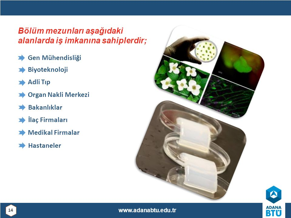 Gen Mühendisliği Biyoteknoloji Adli Tıp Organ Nakli Merkezi Bakanlıklar İlaç Firmaları Medikal Firmalar Hastaneler Bölüm mezunları aşağıdaki alanlarda
