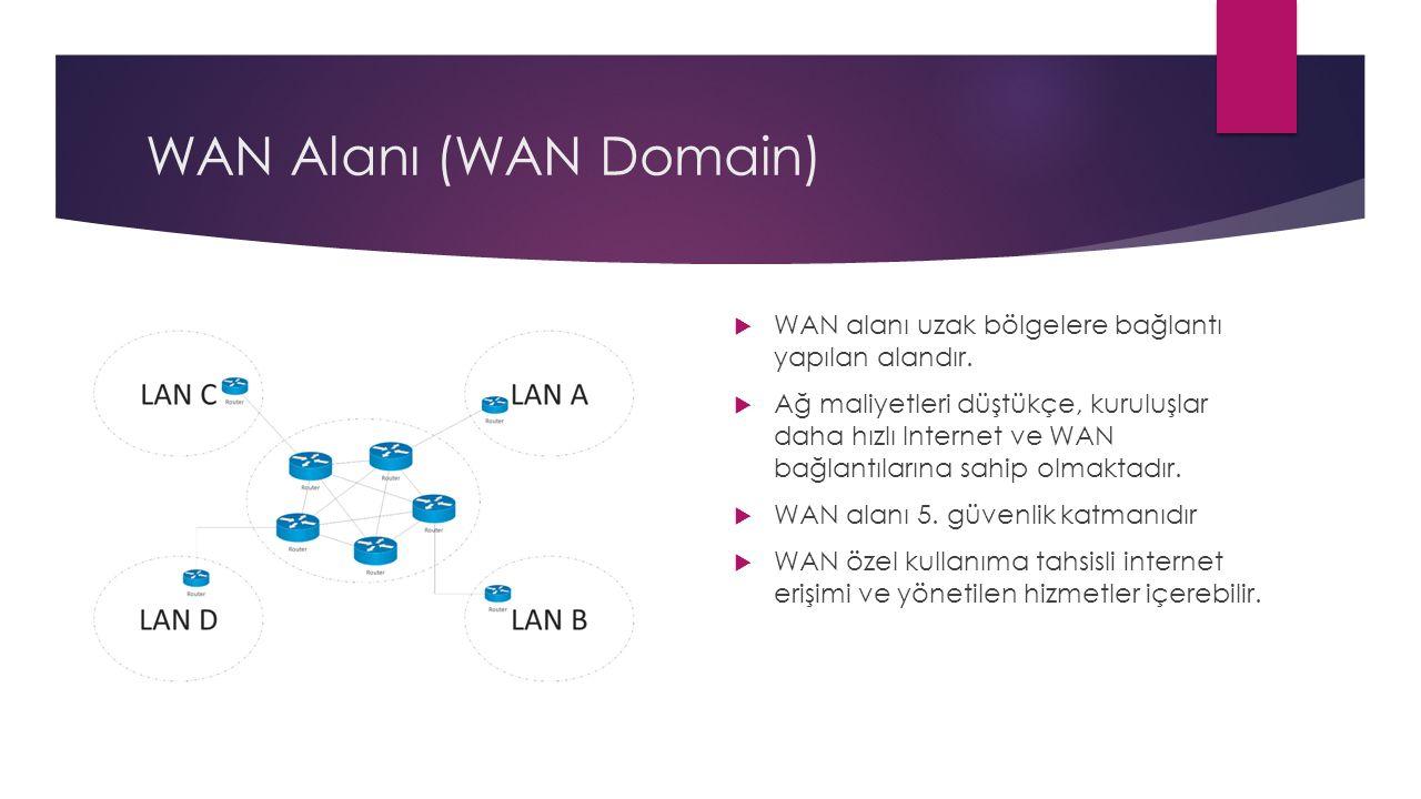 WAN Alanı (WAN Domain)  WAN alanı uzak bölgelere bağlantı yapılan alandır.  Ağ maliyetleri düştükçe, kuruluşlar daha hızlı Internet ve WAN bağlantıl