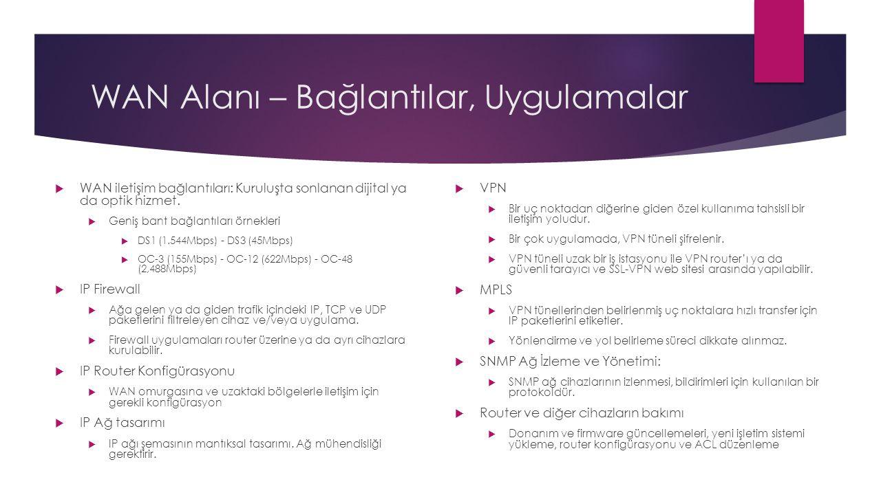 WAN Alanı – Sorumluluklar  WAN alanı hem router ve diğer iletişim cihazlarının fiziksel ve mantıksal bileşenlerini içerir.