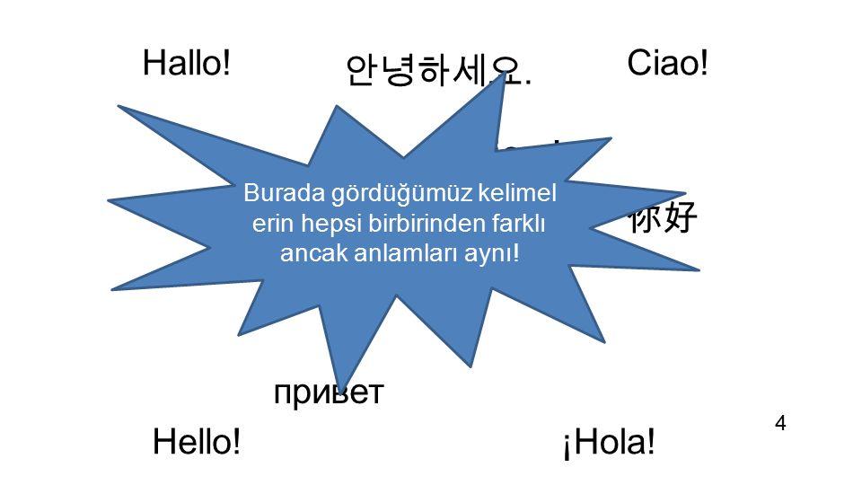 Hallo! مرحبا 你好 Bonjour! ¡Hola! привет 안녕하세요. Ciao! Hello! Merhaba! Burada gördüğümüz kelimel erin hepsi birbirinden farklı ancak anlamları aynı! 4