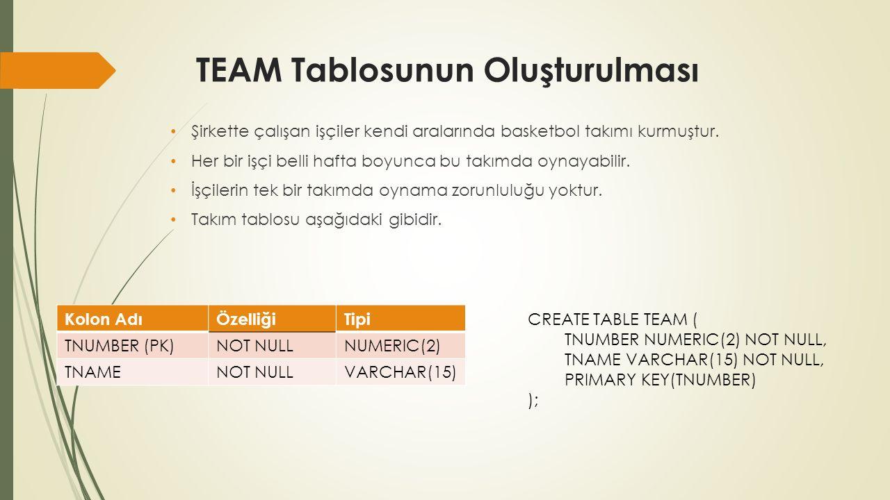 TEAM_EMPLOYEE Tablosunun Oluşturulması «TEAM» tablosu ve «EMPLOYEE» tablolarının ilişki tablosu olan «TEAM_EMPLOYEE» tablosu aşağıdaki özellikleri olacak şekilde oluşturulacaktır.