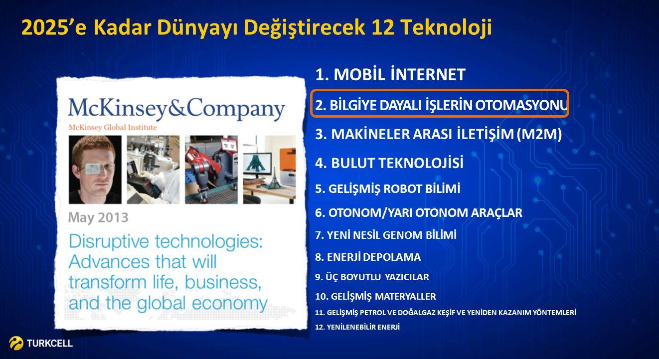 TURKCELL SIR Büyük Veri Turkcell Akıllı Harita Genel Yoğunluk Hedef Kitlenin Yoğunluğu