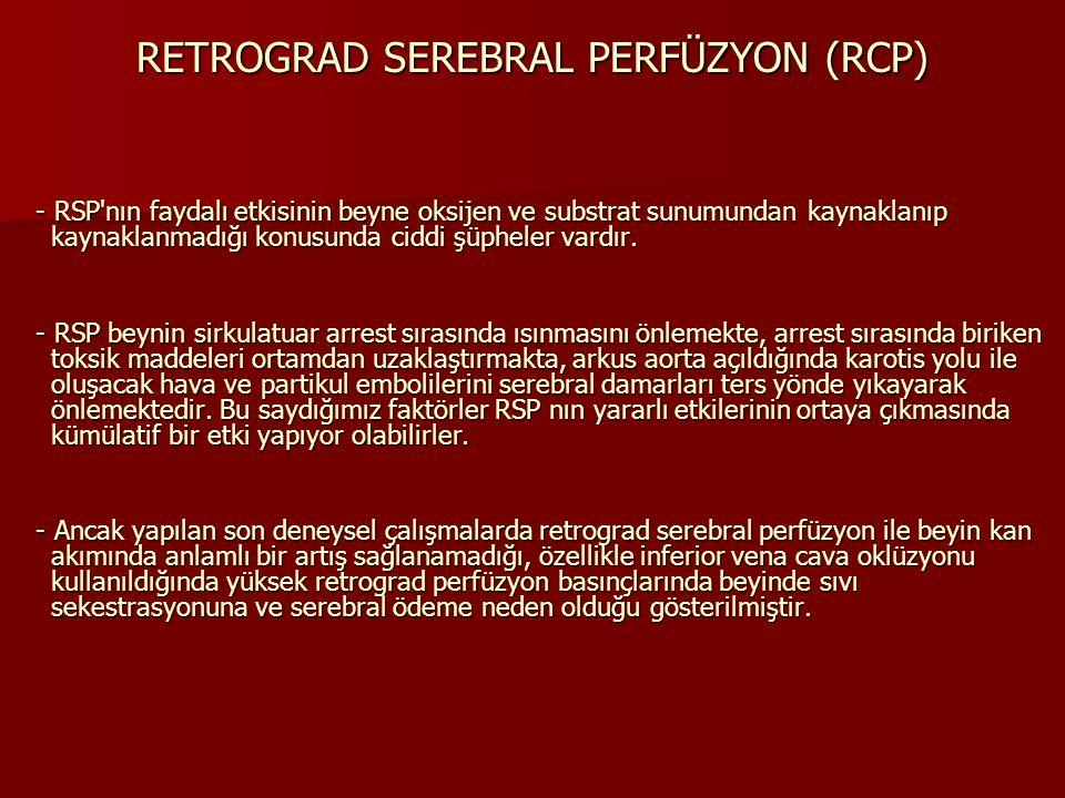 RETROGRAD SEREBRAL PERFÜZYON (RCP) - RSP'nın faydalı etkisinin beyne oksijen ve substrat sunumundan kaynaklanıp kaynaklanmadığı konusunda ciddi şüphel