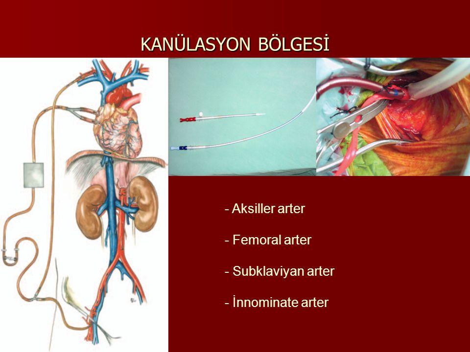 Y Hat: Arteriel ve venöz hat arasına yerleştirilir, KPB esnasında klemp ile kapatılır, arteriyel hatta giren havayı almaya yardımcı olur ve retrograd serebral perfüzyon uygulamasında kullanılır.