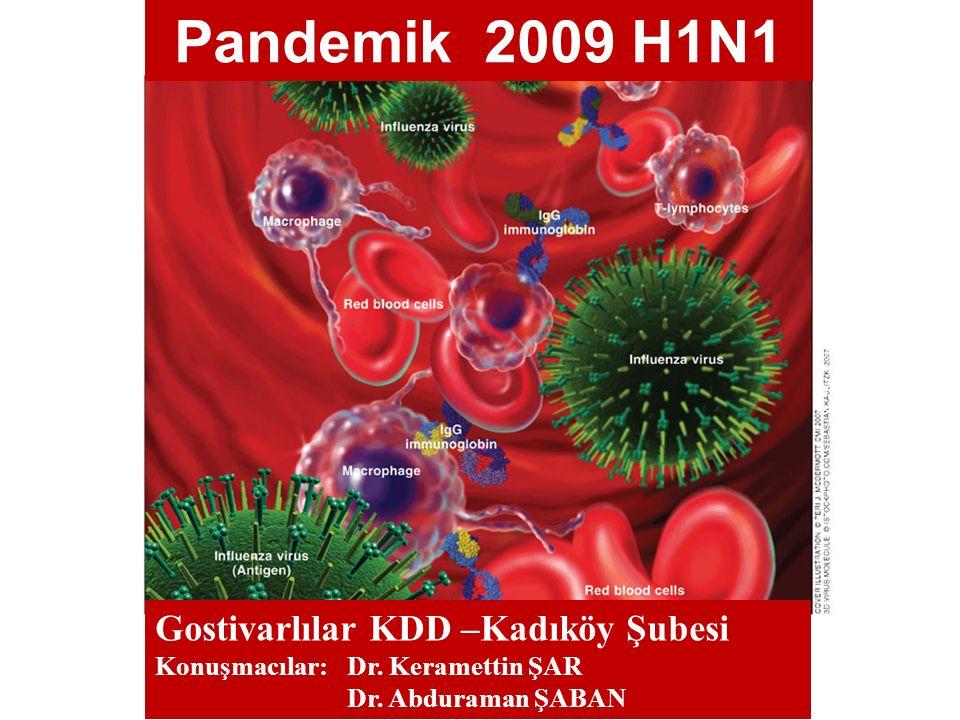 Gostivarlılar KDD –Kadıköy Şubesi Konuşmacılar: Dr. Keramettin ŞAR Dr. Abduraman ŞABAN Pandemik 2009 H1N1