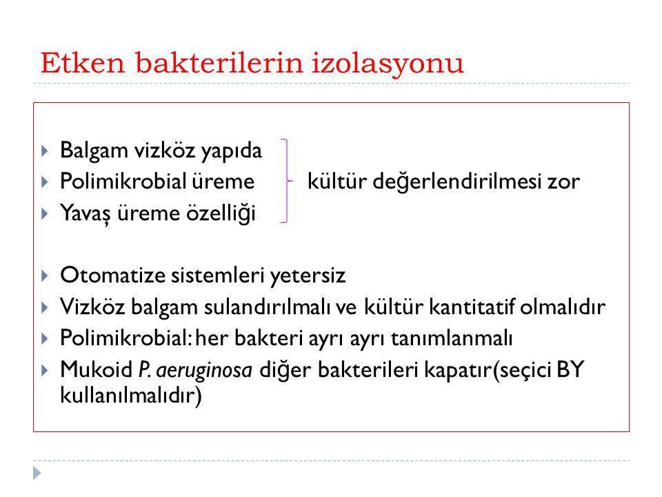 Etken bakterilerin izolasyonu  Balgam vizköz yapıda  Polimikrobial üreme kültür de ğ erlendirilmesi zor  Yavaş üreme özelli ğ i  Otomatize sistemleri yetersiz  Vizköz balgam sulandırılmalı ve kültür kantitatif olmalıdır  Polimikrobial: her bakteri ayrı ayrı tanımlanmalı  Mukoid P.