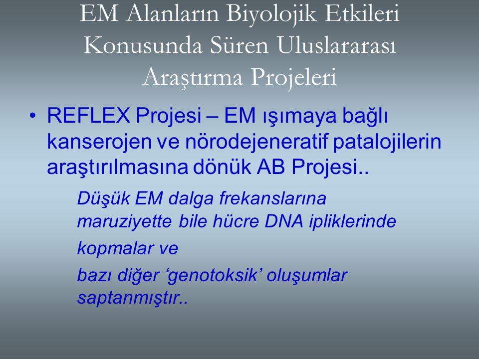 Türkiye'de : Türk Standartları Enstitüsü- TS ENV 501666-2 sayılı, 'İnsanların EM Alanlara Maruz Kalması- Yüksek Frekanslar (10 KHz-300 Ghz) başlıklı s