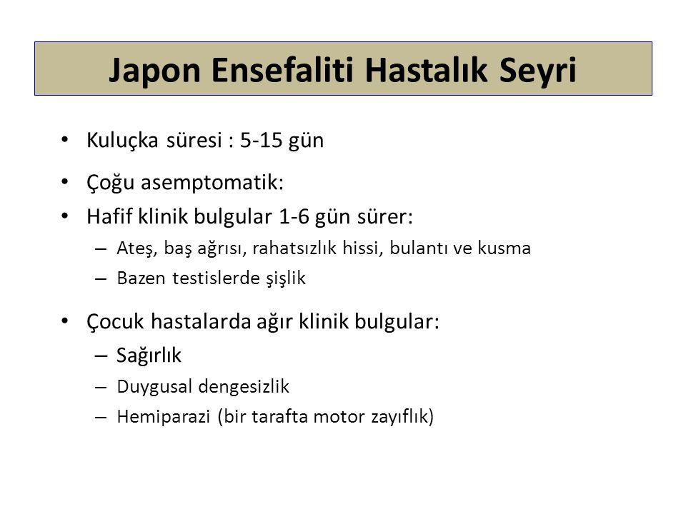 Japon Ensefaliti Hastalık Seyri Kuluçka süresi : 5-15 gün Çoğu asemptomatik: Hafif klinik bulgular 1-6 gün sürer: – Ateş, baş ağrısı, rahatsızlık hiss