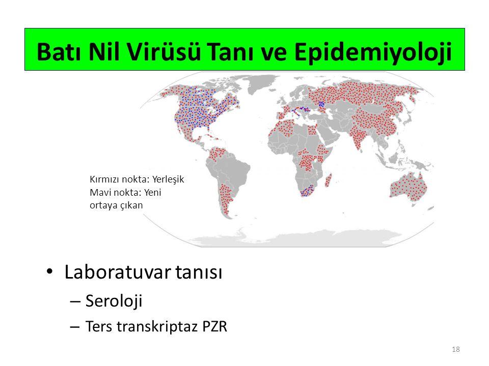 Laboratuvar tanısı – Seroloji – Ters transkriptaz PZR 18 Batı Nil Virüsü Tanı ve Epidemiyoloji Kırmızı nokta: Yerleşik Mavi nokta: Yeni ortaya çıkan