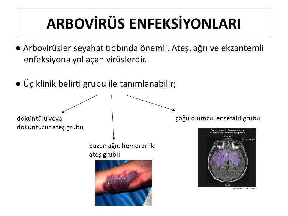 ARBOVİRÜS ENFEKSİYONLARI ● Arbovirüsler seyahat tıbbında önemli. Ateş, ağrı ve ekzantemli enfeksiyona yol açan virüslerdir. ● Üç klinik belirti grubu