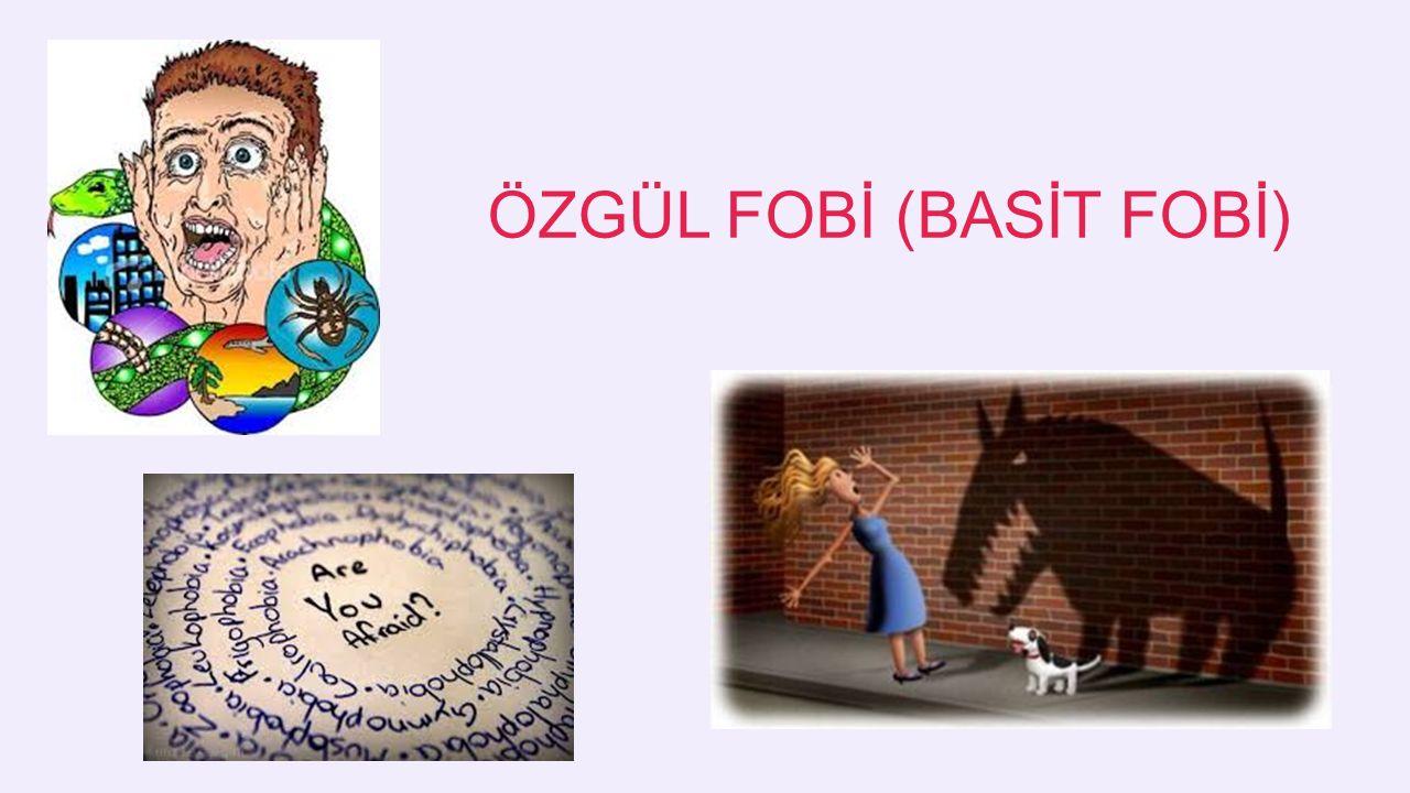ÖZGÜL FOBİ (BASİT FOBİ)