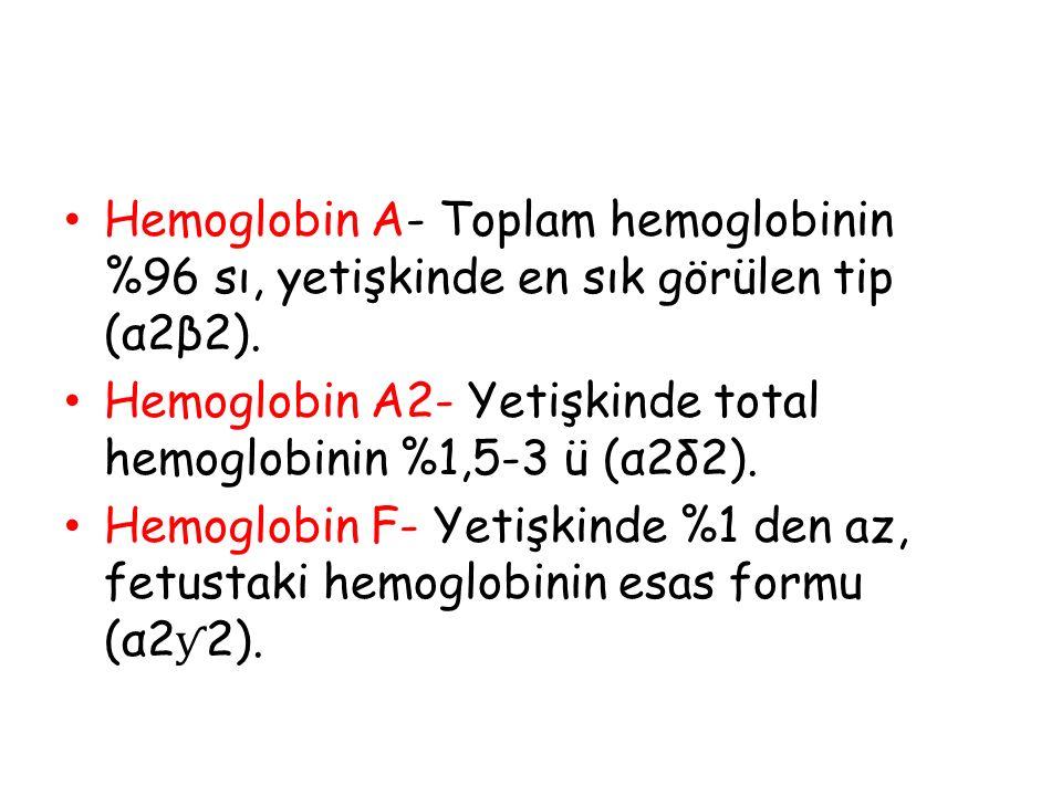 Hemoglobin A- Toplam hemoglobinin %96 sı, yetişkinde en sık görülen tip (α2β2). Hemoglobin A2- Yetişkinde total hemoglobinin %1,5-3 ü (α2δ2). Hemoglob