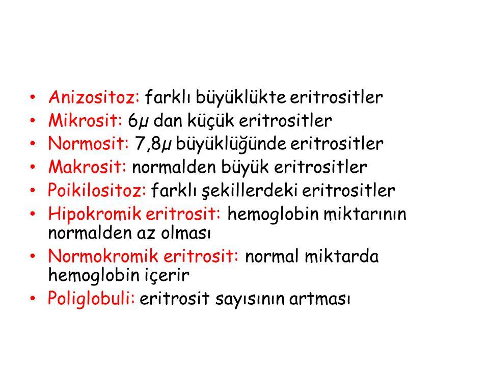 Anizositoz: farklı büyüklükte eritrositler Mikrosit: 6µ dan küçük eritrositler Normosit: 7,8µ büyüklüğünde eritrositler Makrosit: normalden büyük erit