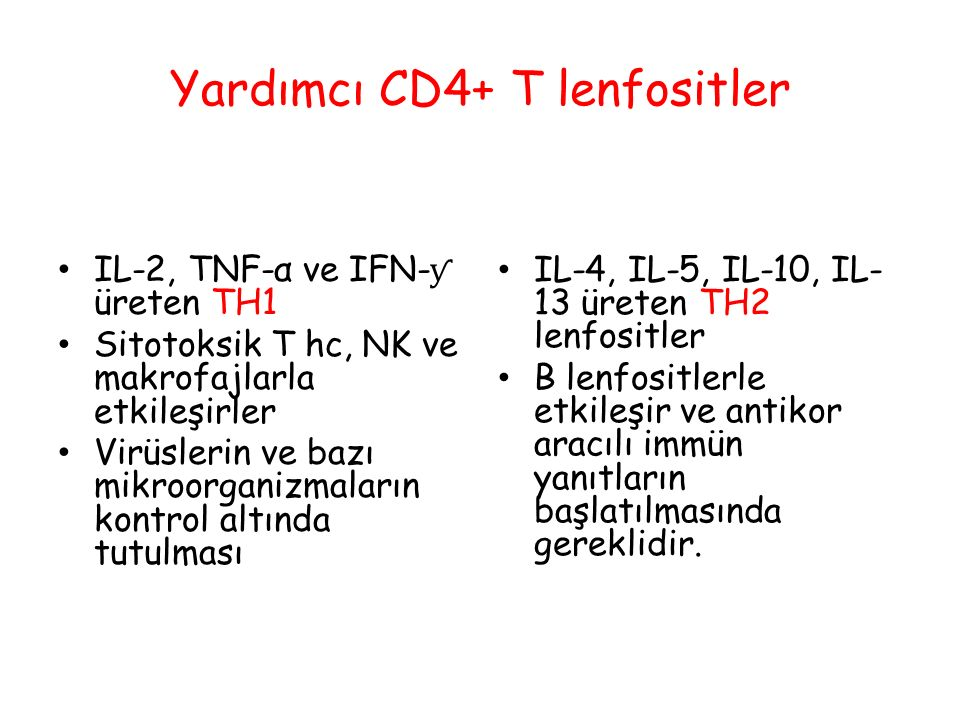Yardımcı CD4+ T lenfositler IL-2, TNF-α ve IFN- ƴ üreten TH1 Sitotoksik T hc, NK ve makrofajlarla etkileşirler Virüslerin ve bazı mikroorganizmaların