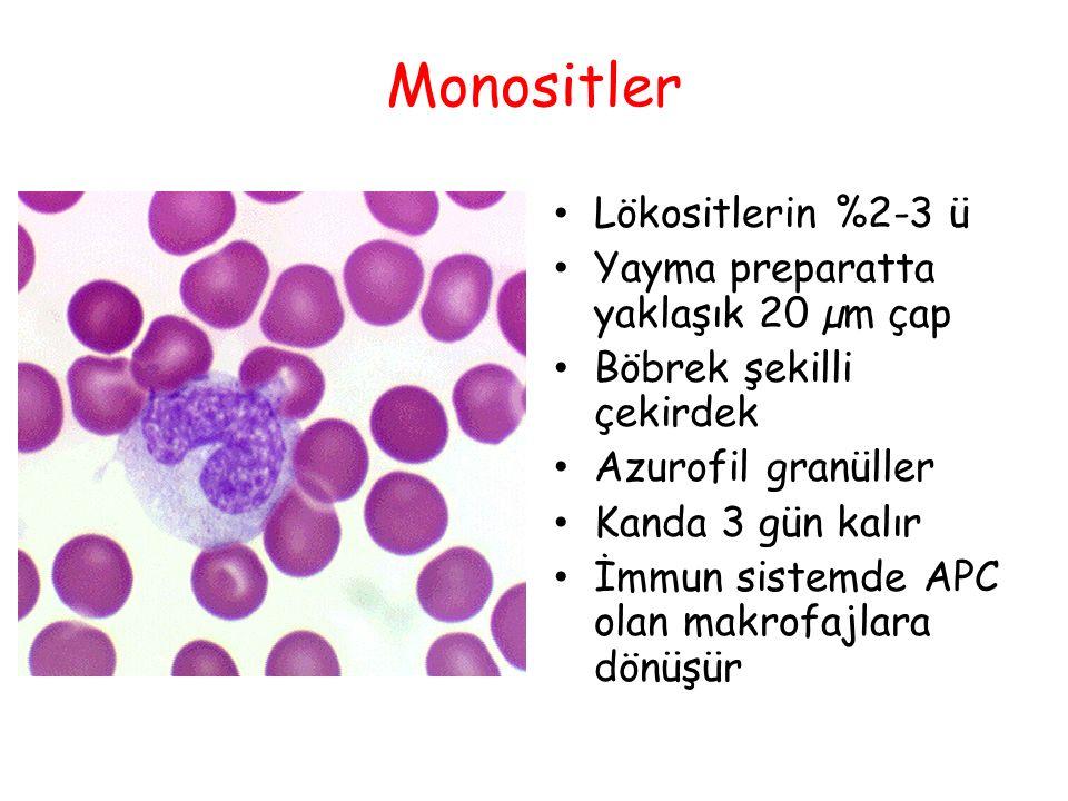 Monositler Lökositlerin %2-3 ü Yayma preparatta yaklaşık 20 µm çap Böbrek şekilli çekirdek Azurofil granüller Kanda 3 gün kalır İmmun sistemde APC ola