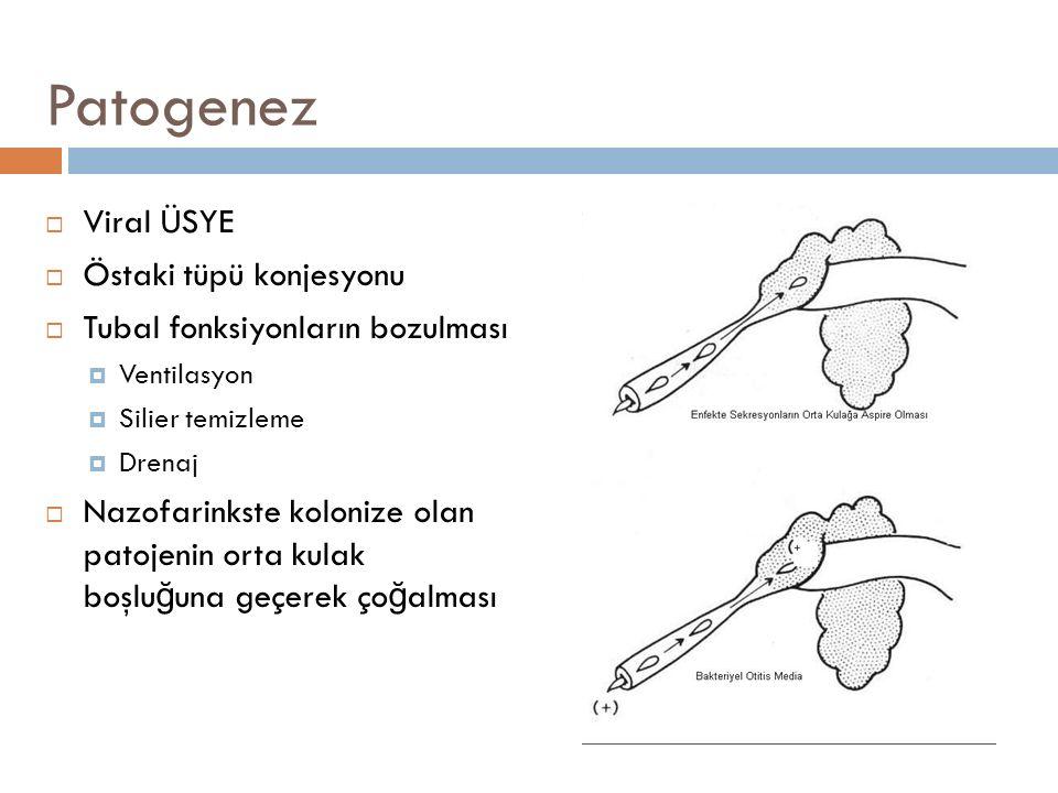Patogenez  Viral ÜSYE  Östaki tüpü konjesyonu  Tubal fonksiyonların bozulması  Ventilasyon  Silier temizleme  Drenaj  Nazofarinkste kolonize ol