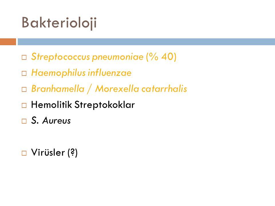 Bakterioloji  Streptococcus pneumoniae (% 40)  Haemophilus influenzae  Branhamella / Morexella catarrhalis  Hemolitik Streptokoklar  S. Aureus 