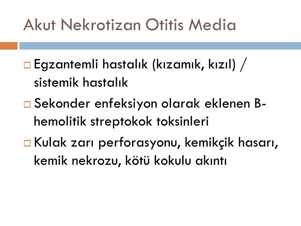 Akut Nekrotizan Otitis Media  Egzantemli hastalık (kızamık, kızıl) / sistemik hastalık  Sekonder enfeksiyon olarak eklenen B- hemolitik streptokok t