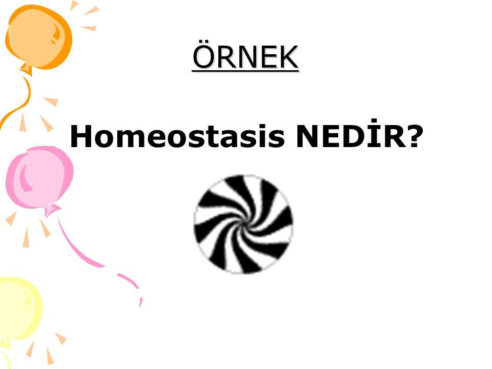 ÖRNEK Homeostasis NEDİR?