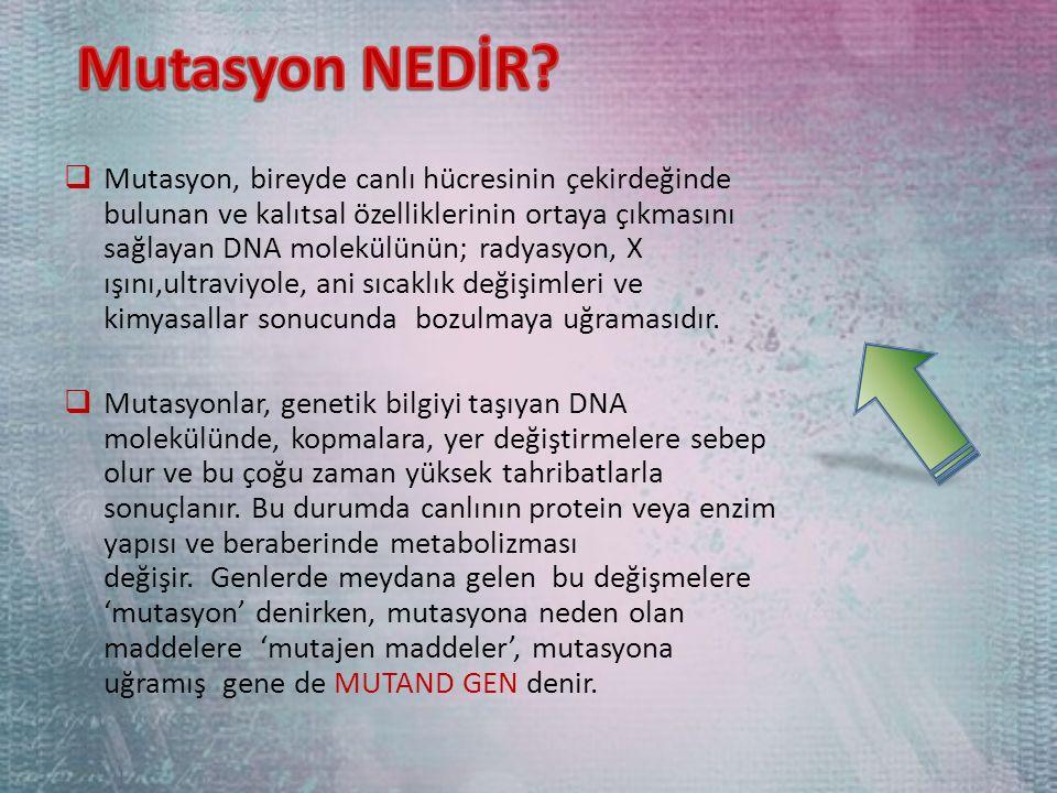  Mutasyon, bireyde canlı hücresinin çekirdeğinde bulunan ve kalıtsal özelliklerinin ortaya çıkmasını sağlayan DNA molekülünün; radyasyon, X ışını,ultraviyole, ani sıcaklık değişimleri ve kimyasallar sonucunda bozulmaya uğramasıdır.