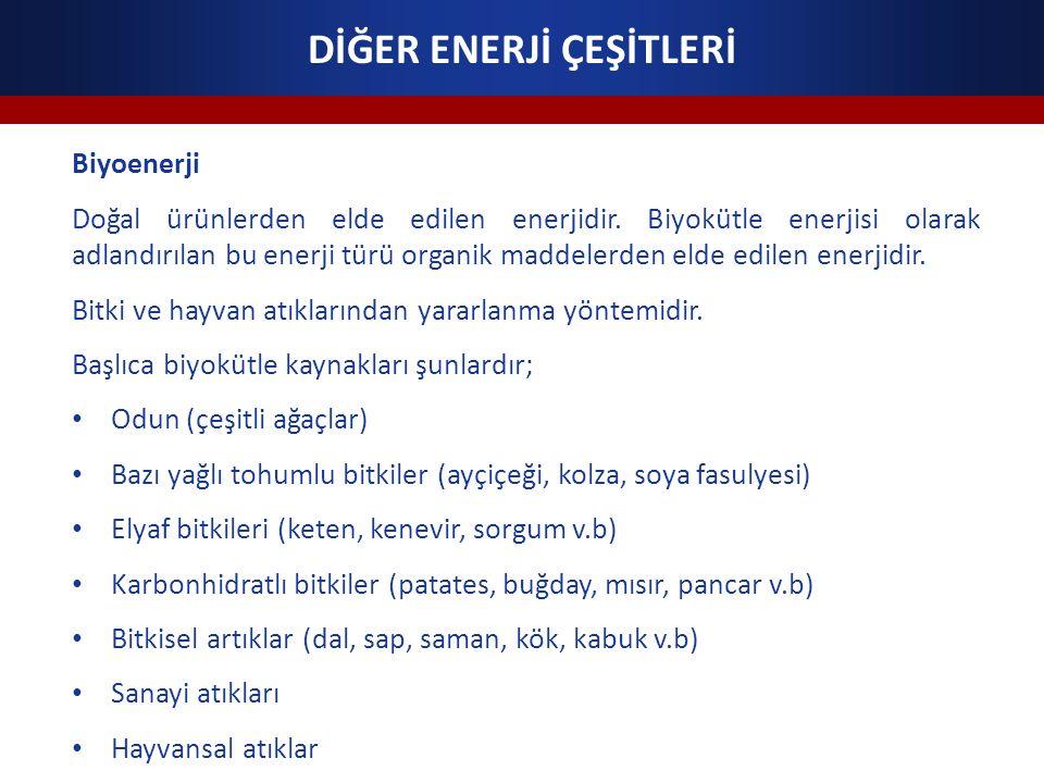 DİĞER ENERJİ ÇEŞİTLERİ Biyoenerji Doğal ürünlerden elde edilen enerjidir.