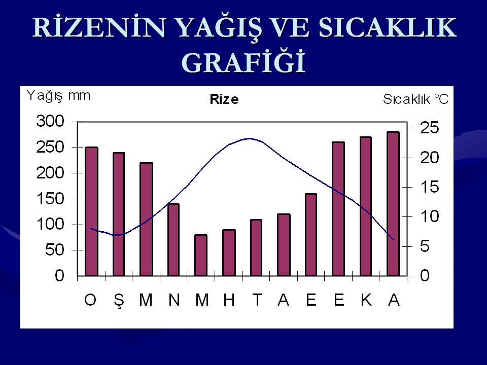 TÜRKİYEDE İKLİM ÇEŞİTLERİ TÜRKİYE DE İKLİM ÇEŞİTLERİTÜRKİYE DE İKLİM ÇEŞİTLERİ Türkiye de genel olarak üç ana iklim tipi görülür.