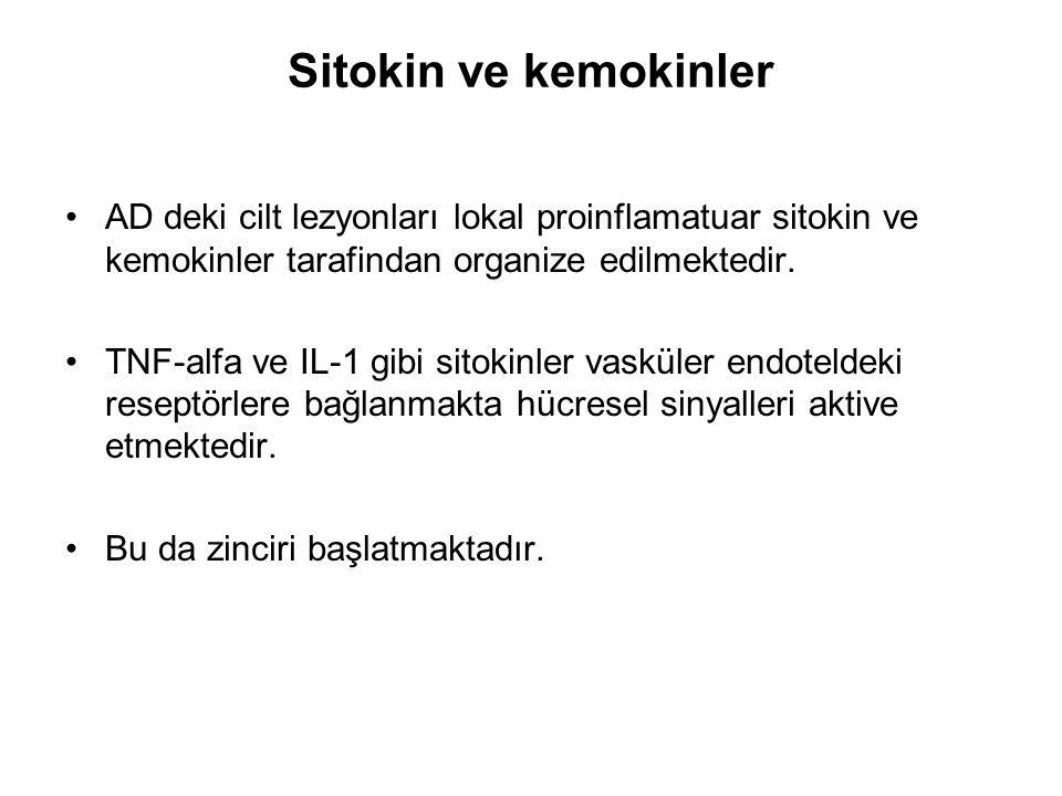 Sitokin ve kemokinler AD deki cilt lezyonları lokal proinflamatuar sitokin ve kemokinler tarafindan organize edilmektedir. TNF-alfa ve IL-1 gibi sitok