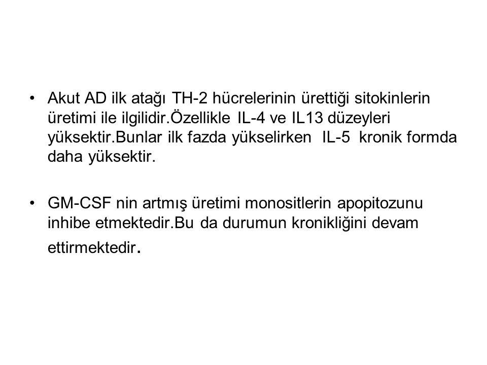Akut AD ilk atağı TH-2 hücrelerinin ürettiği sitokinlerin üretimi ile ilgilidir.Özellikle IL-4 ve IL13 düzeyleri yüksektir.Bunlar ilk fazda yükselirke