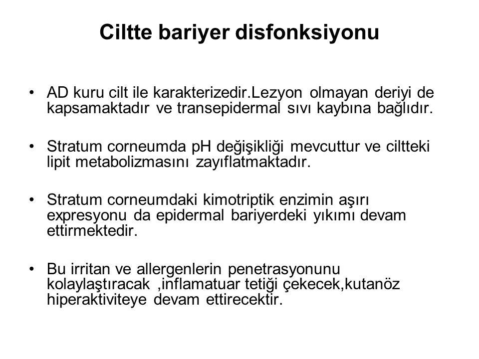 Ciltte bariyer disfonksiyonu AD kuru cilt ile karakterizedir.Lezyon olmayan deriyi de kapsamaktadır ve transepidermal sıvı kaybına bağlıdır. Stratum c