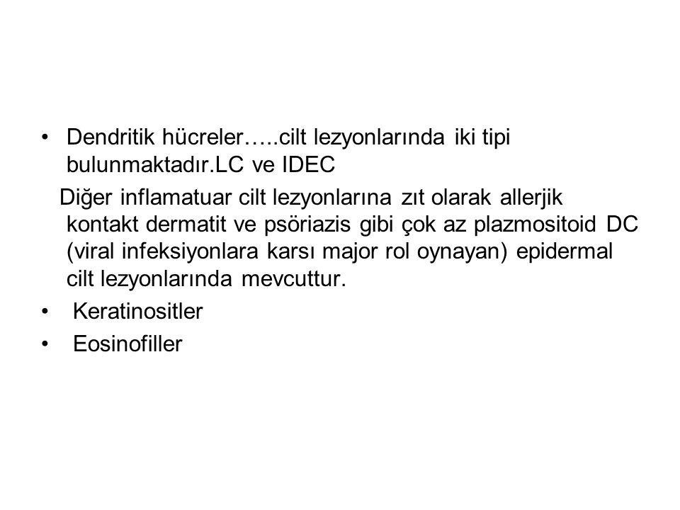 Dendritik hücreler…..cilt lezyonlarında iki tipi bulunmaktadır.LC ve IDEC Diğer inflamatuar cilt lezyonlarına zıt olarak allerjik kontakt dermatit ve