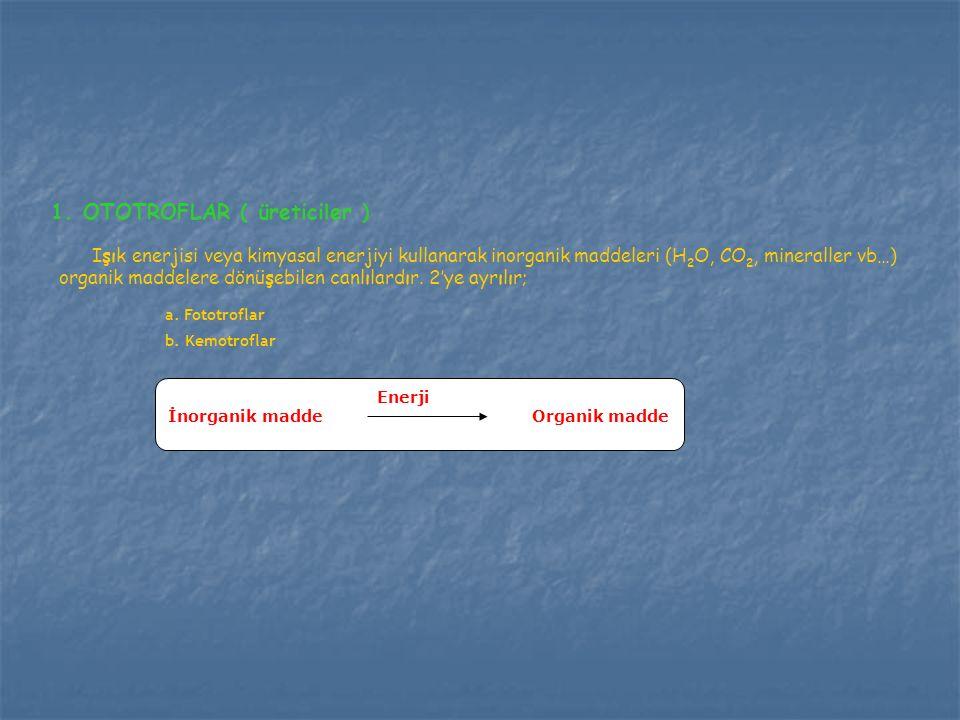 1. OTOTROFLAR ( üreticiler ) Işık enerjisi veya kimyasal enerjiyi kullanarak inorganik maddeleri (H 2 O, CO 2, mineraller vb…) organik maddelere dönüş
