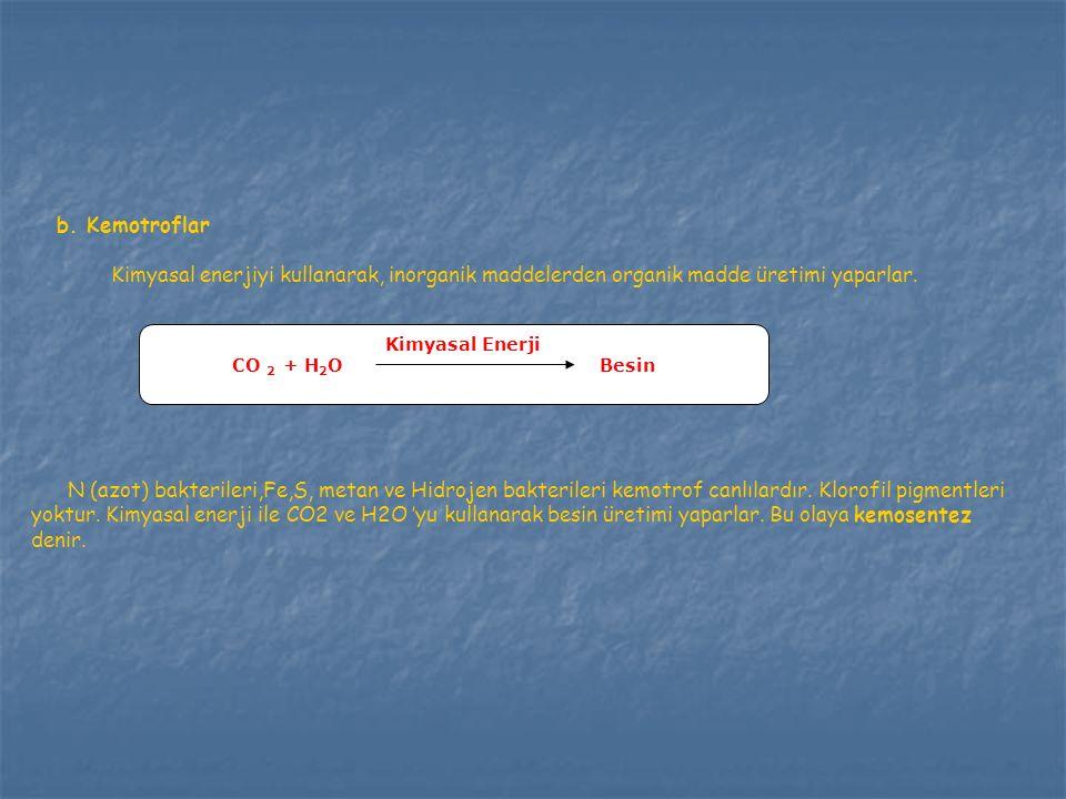 Soru 7  X+Y = Z şeklindeki bir denklemde Z ekosistemi temsil ediyorsa; X ve Y aşağıdakilerden hangisinde doğru eşleştirilmiştir .