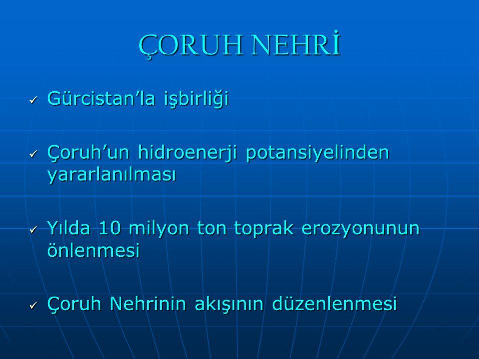 ÇORUH NEHR İ Gürcistan'la işbirliği Gürcistan'la işbirliği Çoruh'un hidroenerji potansiyelinden yararlanılması Çoruh'un hidroenerji potansiyelinden ya