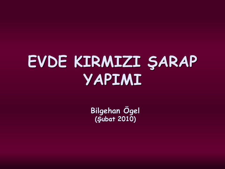 EVDE KIRMIZI ŞARAP YAPIMI Bilgehan Ögel (Şubat 2010)