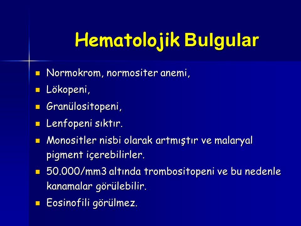 Hematolojik Bulgular Normokrom, normositer anemi, Normokrom, normositer anemi, Lökopeni, Lökopeni, Granülositopeni, Granülositopeni, Lenfopeni sıktır.