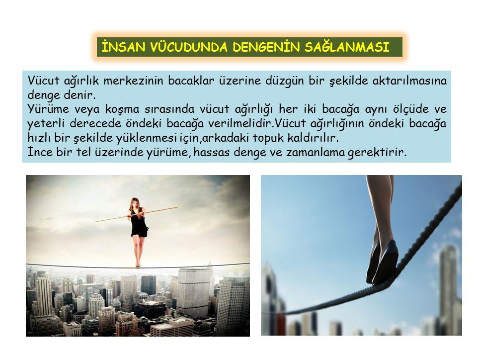 İNSAN VÜCUDUNDA DENGENİN SAĞLANMASI Vücut ağırlık merkezinin bacaklar üzerine düzgün bir şekilde aktarılmasına denge denir. Yürüme veya koşma sırasınd