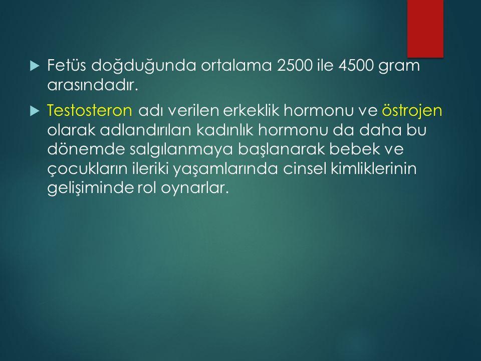  Fetüs doğduğunda ortalama 2500 ile 4500 gram arasındadır.