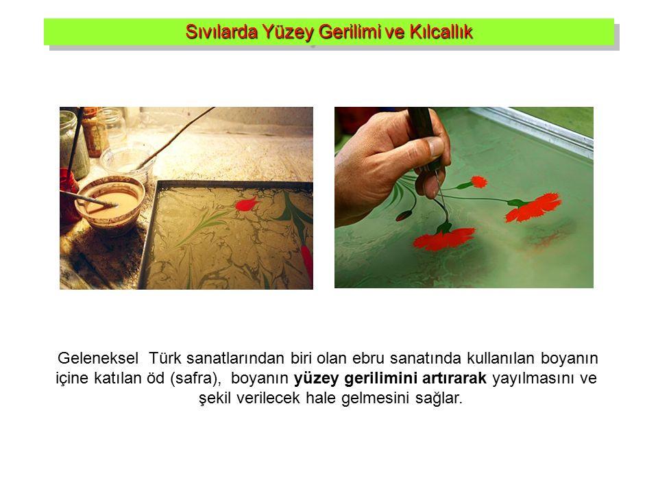 Geleneksel Türk sanatlarından biri olan ebru sanatında kullanılan boyanın içine katılan öd (safra), boyanın yüzey gerilimini artırarak yayılmasını ve