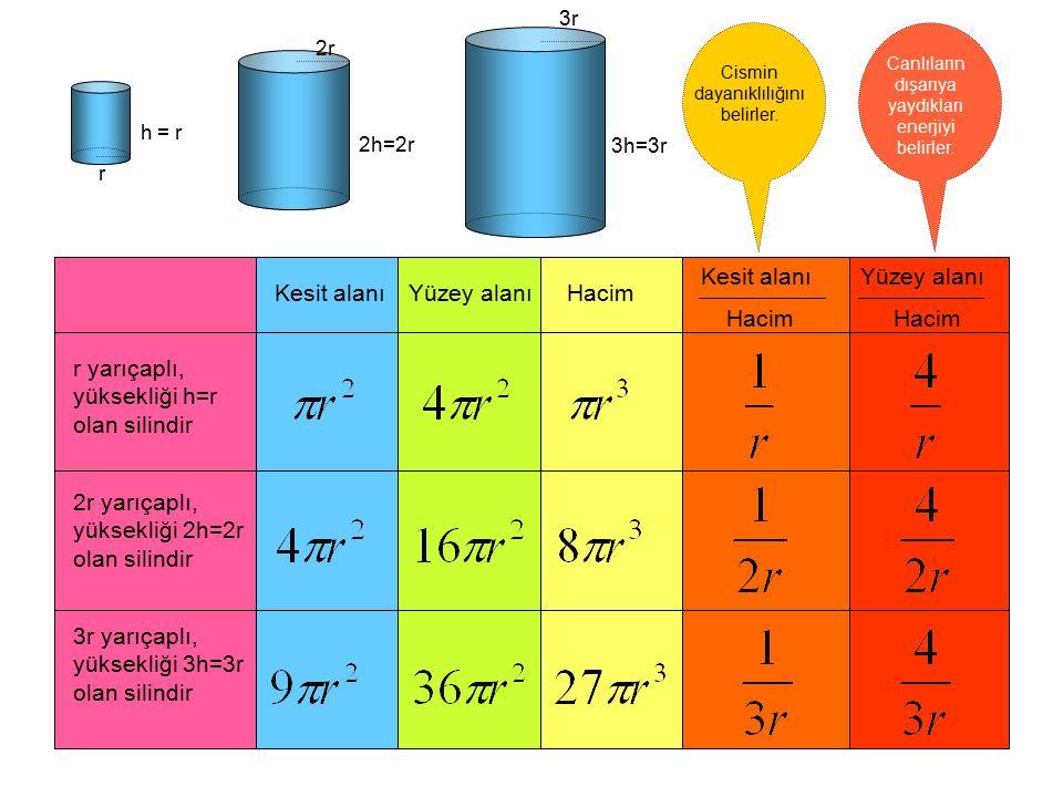 Kesit alanı Yüzey alanı Hacim Kesit alanı Hacim Yüzey alanı Hacim r yarıçaplı, yüksekliği h=r olan silindir 2r yarıçaplı, yüksekliği 2h=2r olan silind