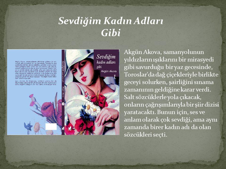 Akgün Akova, samanyolunun yıldızların ışıklarını bir mirasyedi gibi savurduğu bir yaz gecesinde, Toroslar da dağ çiçekleriyle birlikte geceyi solurken, şairliğini sınama zamanının geldiğine karar verdi.