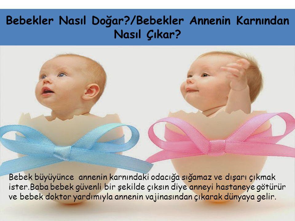 Bebekler Nasıl Doğar?/Bebekler Annenin Karnından Nasıl Çıkar? Bebek büyüyünce annenin karnındaki odacığa sığamaz ve dışarı çıkmak ister.Baba bebek güv