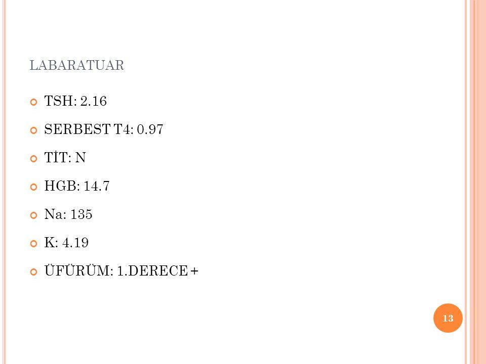 LABARATUAR TSH: 2.16 SERBEST T4: 0.97 TİT: N HGB: 14.7 Na: 135 K: 4.19 ÜFÜRÜM: 1.DERECE + 13