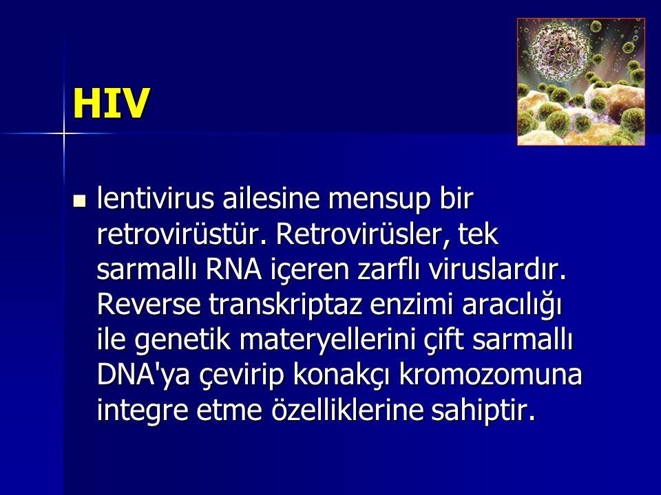 HIV lentivirus ailesine mensup bir retrovirüstür. Retrovirüsler, tek sarmallı RNA içeren zarflı viruslardır. Reverse transkriptaz enzimi aracılığı ile