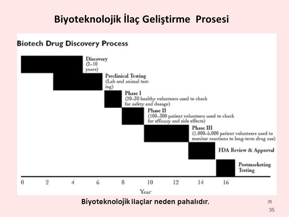 35 Biyoteknolojik İlaç Geliştirme Prosesi Biyoteknolojik ilaçlar neden pahalıdır.