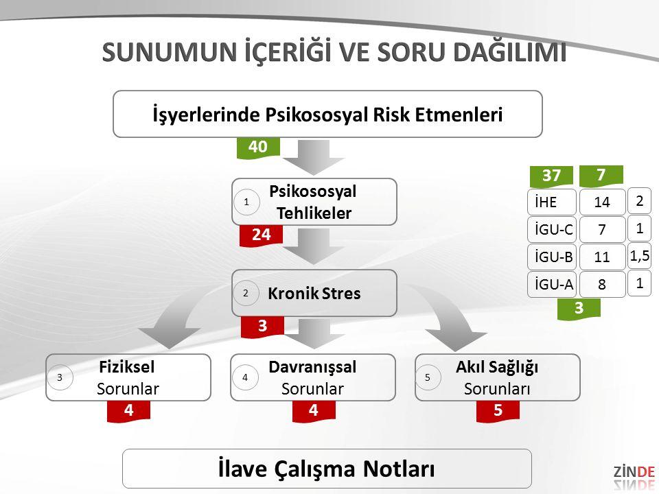 Psikososyal Tehlikeler Kronik Stres Fiziksel Sorunlar Davranışsal Sorunlar Akıl Sağlığı Sorunları 40 445 3 İşyerlerinde Psikososyal Risk Etmenleri 24