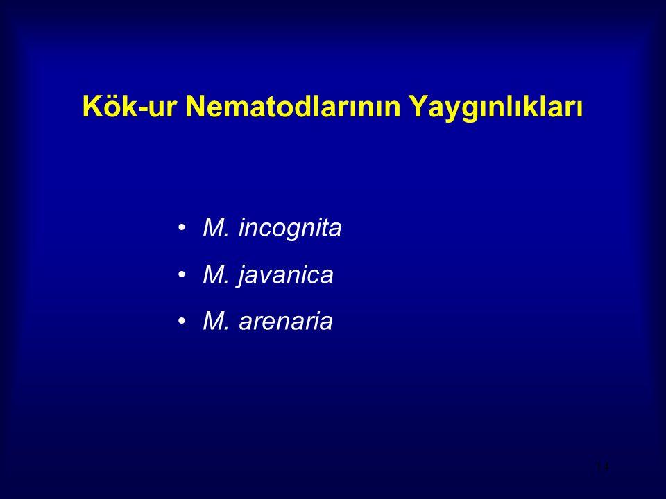 14 Kök-ur Nematodlarının Yaygınlıkları M. incognita M. javanica M. arenaria